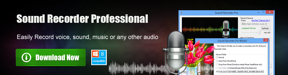 Sound Recorder Professional, Record Audio, online music to MP3